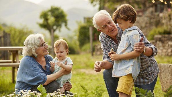 Kúria döntése a nagyszülői kapcsolattartásról