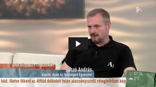 TV2 Mokka: Váltott elhelyezésért küzdenek az elvált apák